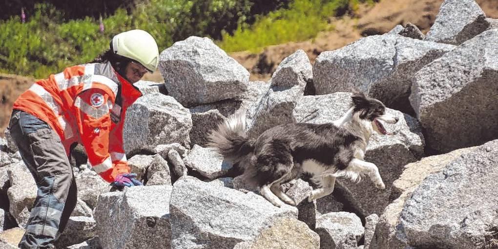 Rettungshunde des DRK-Ortsvereins üben das Auffinden von Verletzten im Steinbruch der Firma Röhrig in Sonderbach